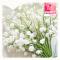 meiklokjes-bloemen-van-gucht