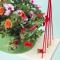 Planten die van jouw tuin, terras of balkon een bloeiende oase maken