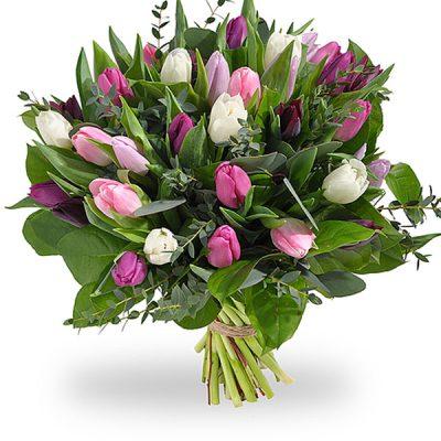 boeket-tulpen