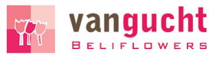 Bloemen Van Gucht - Beliflowers